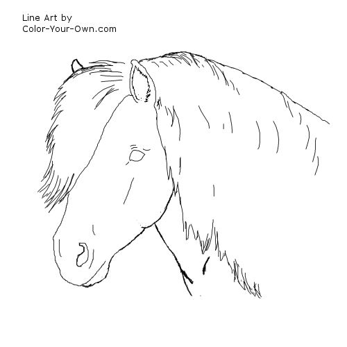 shetland pony coloring pages cute shetland pony coloring page supercoloringcom pony pages shetland coloring
