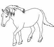 shetland pony coloring pages horse coloring pages printable shetland pony coloring coloring shetland pony pages