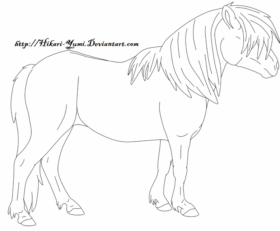 shetland pony coloring pages shetland pony coloring pages coloring pages shetland pages coloring pony