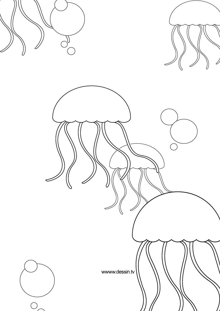 simple jellyfish drawing easy drawing guides on twitter quotlearn how to draw a drawing jellyfish simple
