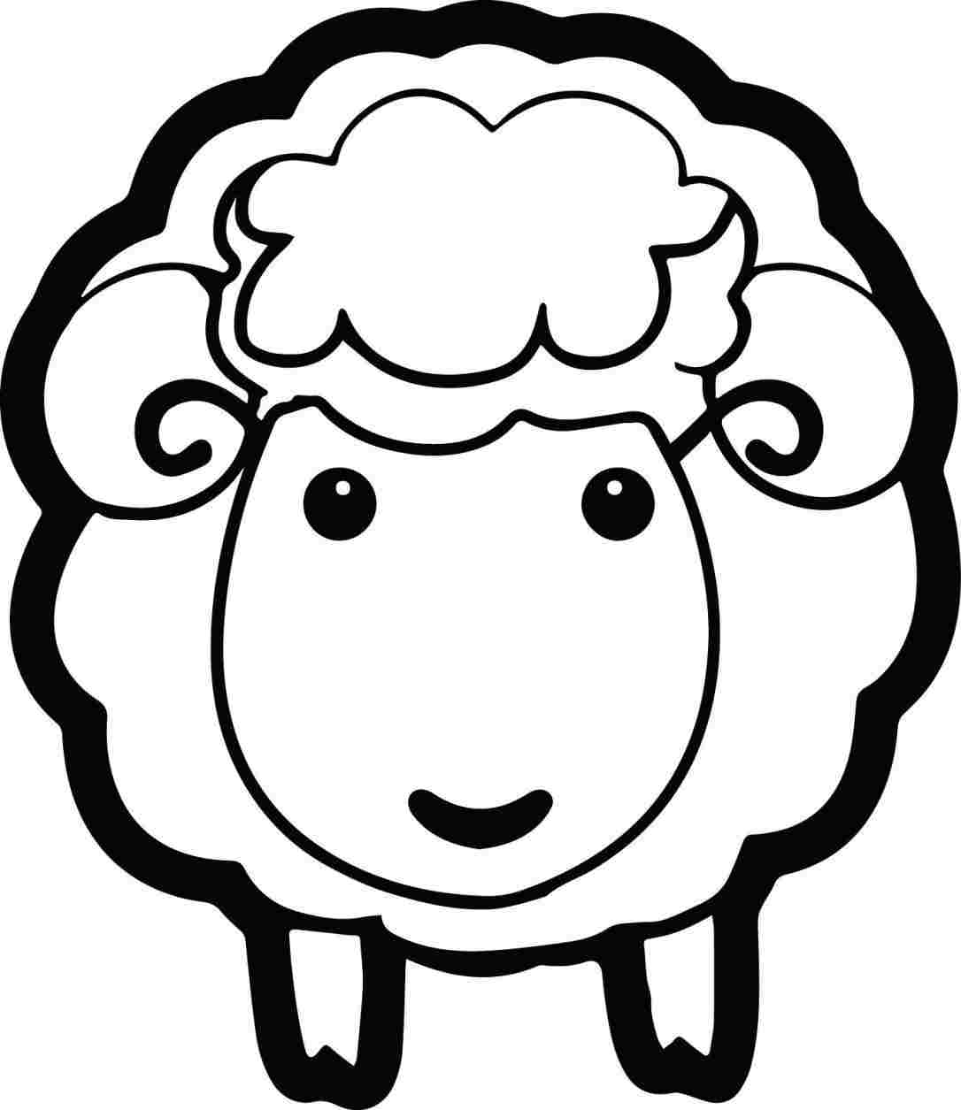 sketch of a sheep cartoon sheep drawing free download on clipartmag of a sketch sheep