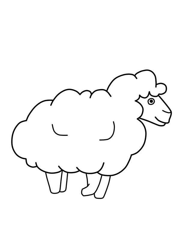 sketch of a sheep drawing sheep outline coloring page coloring sky of a sketch sheep
