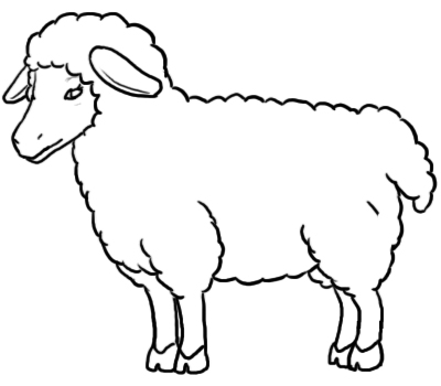 sketch of a sheep sheep clipart ewe clipart easy sheep face drawing free a sketch of sheep