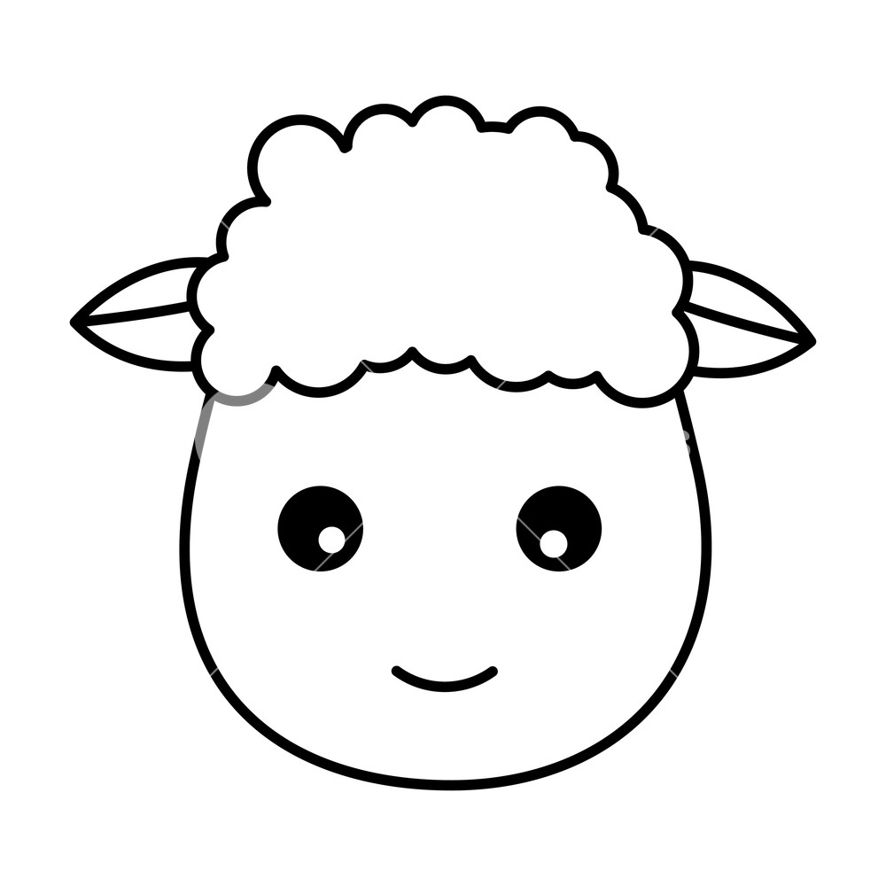 sketch of a sheep sheep face drawing free download on clipartmag of sheep sketch a