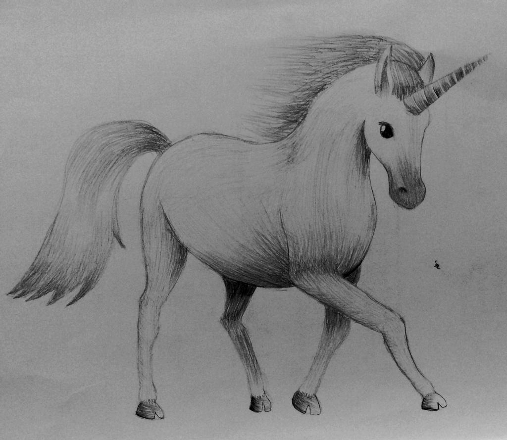 sketch of a unicorn first time draw a realistic unicorn by lanah artz on of sketch unicorn a