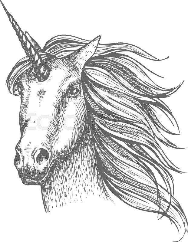 sketch of a unicorn unicorn sketch at paintingvalleycom explore collection a of sketch unicorn