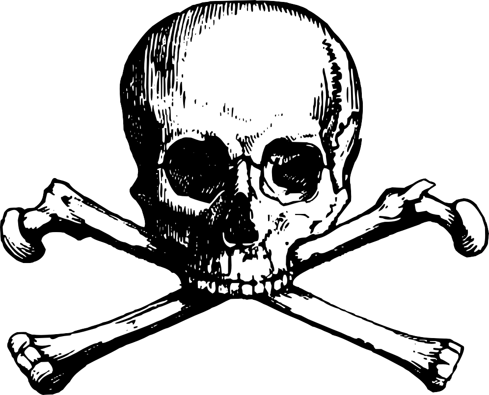 skull and crossbones coloring page free pirate skulls coloring pages download free clip art coloring skull and crossbones page