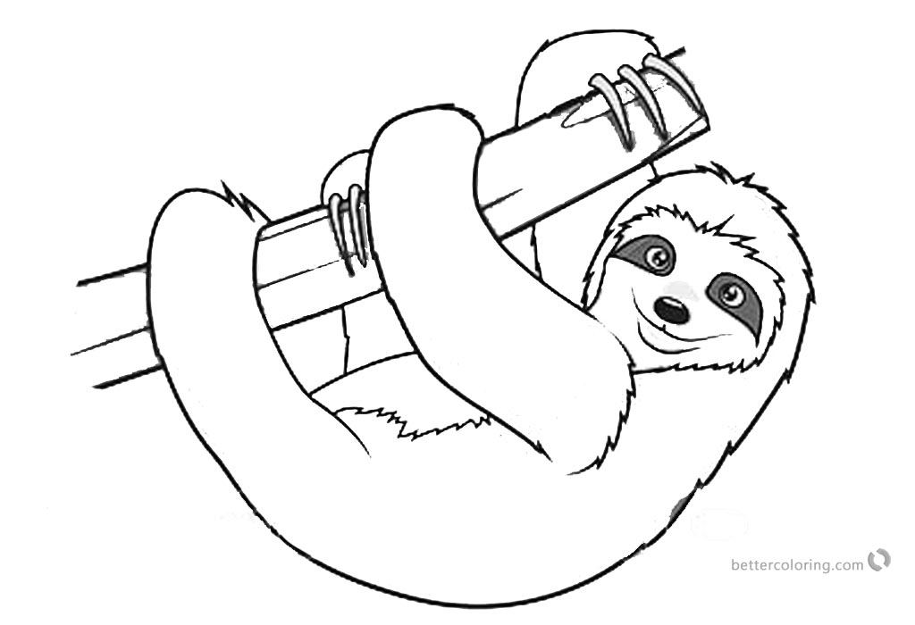 Sloth pictures to print