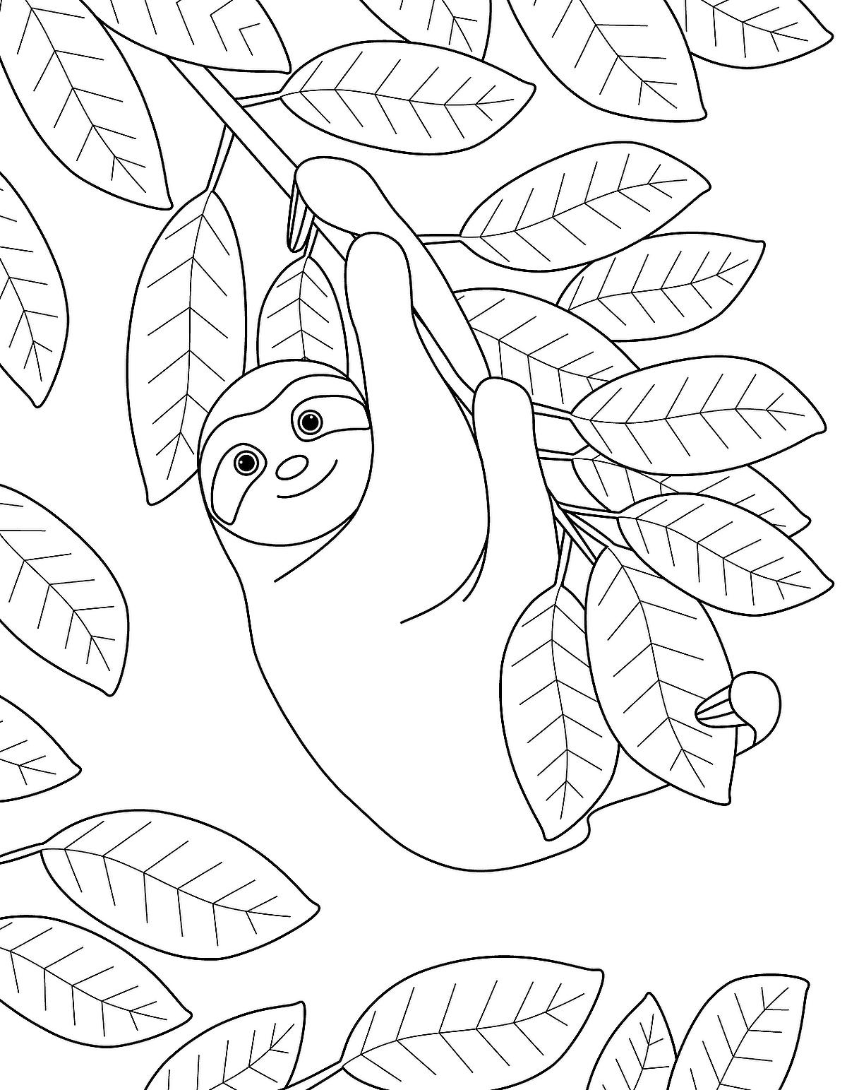 sloth pictures to print three toed sloth drawing play the best online pokies in to pictures print sloth