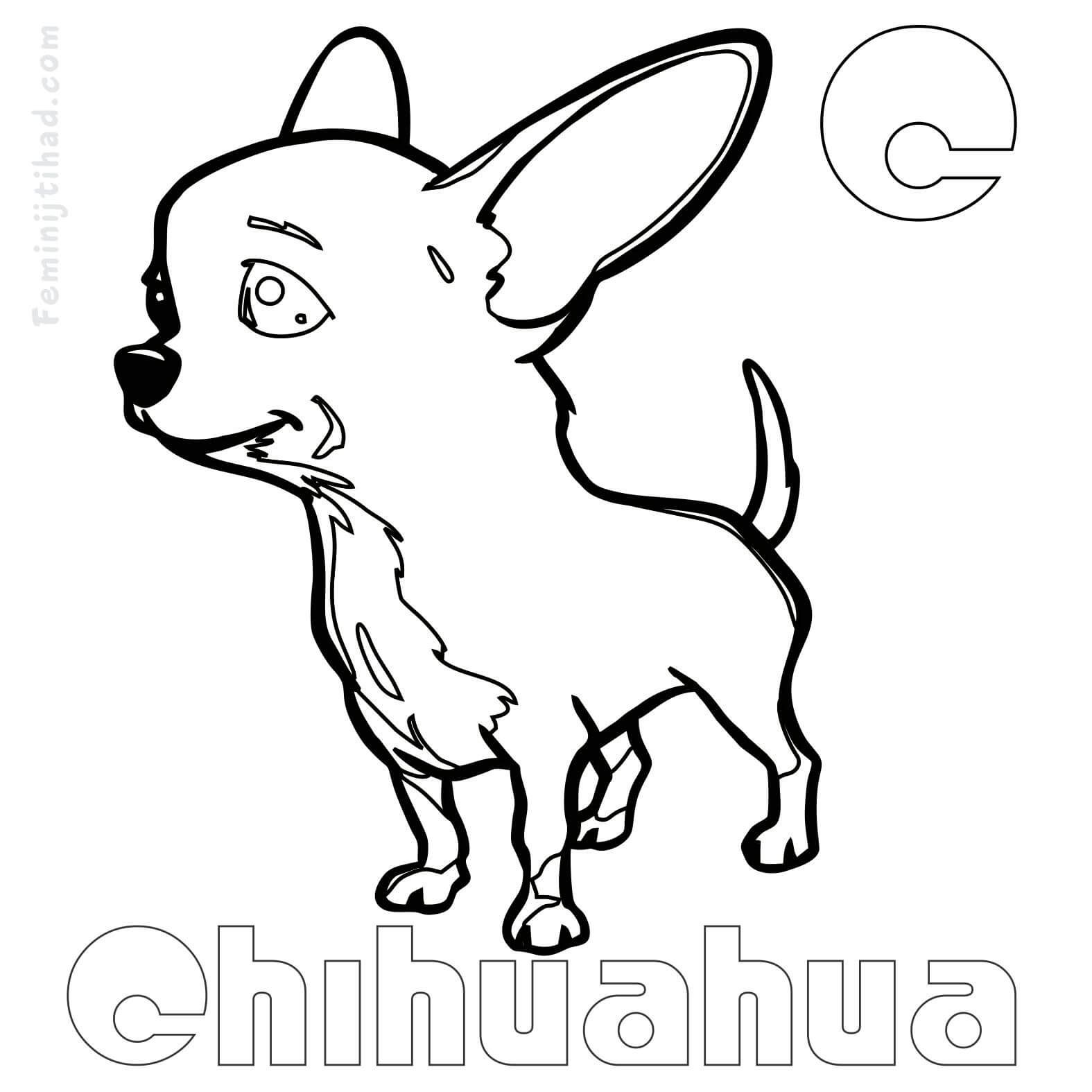 small dog coloring pages two little dog coloring page dog pinterest dog free small dog pages coloring