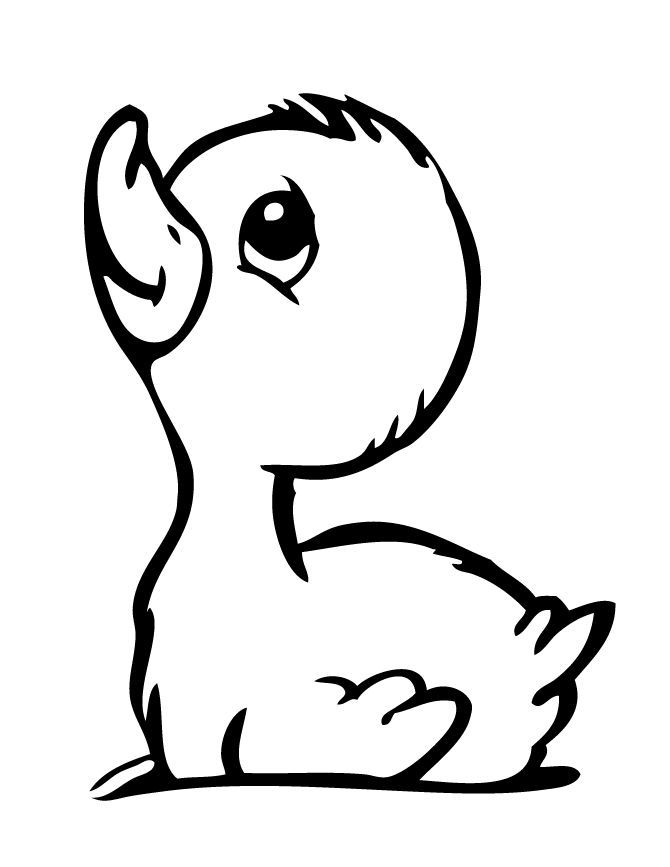 small printable pictures of animals cute cat coloring page free printable coloring pages for animals pictures printable of small