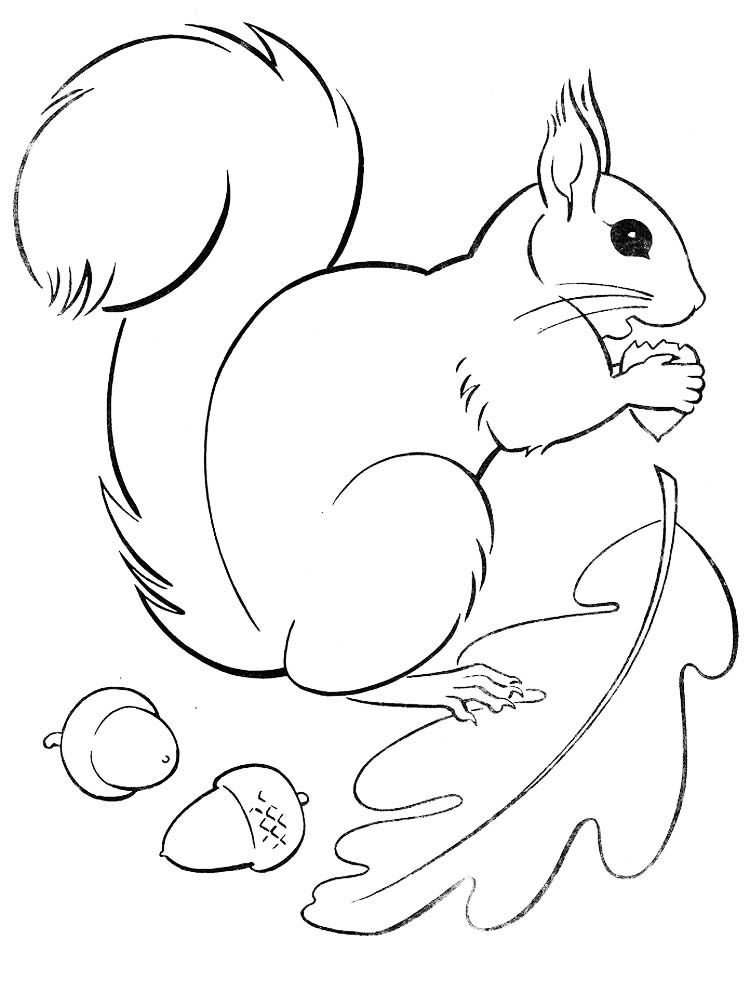small printable pictures of animals cute dog animal coloring pages books for print pictures of printable animals small