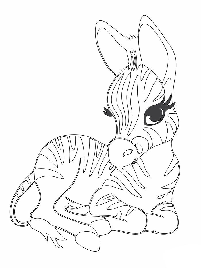 small printable pictures of animals free printable tiger coloring pages for kids animal of small pictures animals printable
