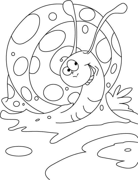 snail colour snail coloring pages to download and print for free snail colour