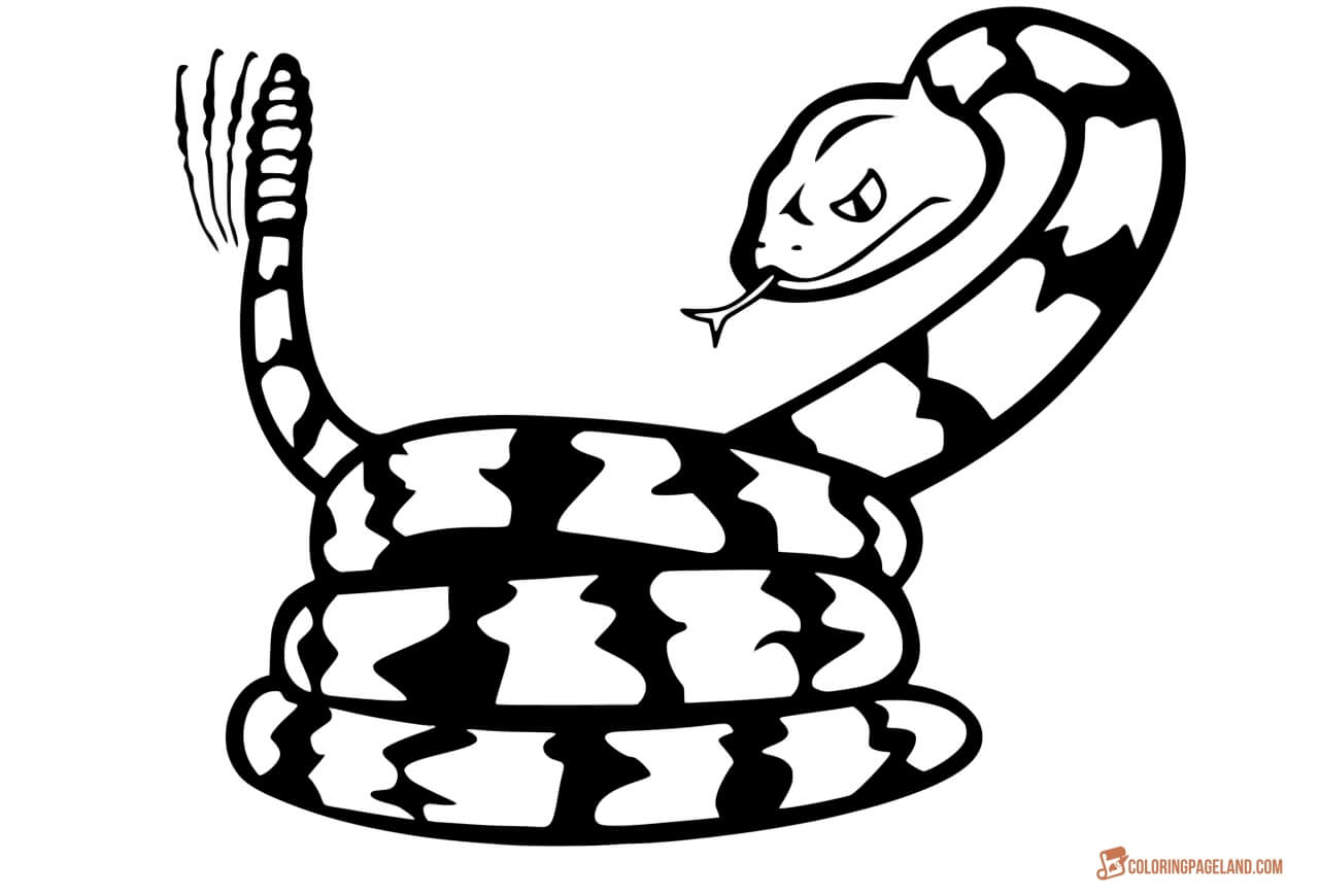 snake coloring pictures snake coloring pages free downloadable and printable sheets coloring snake pictures