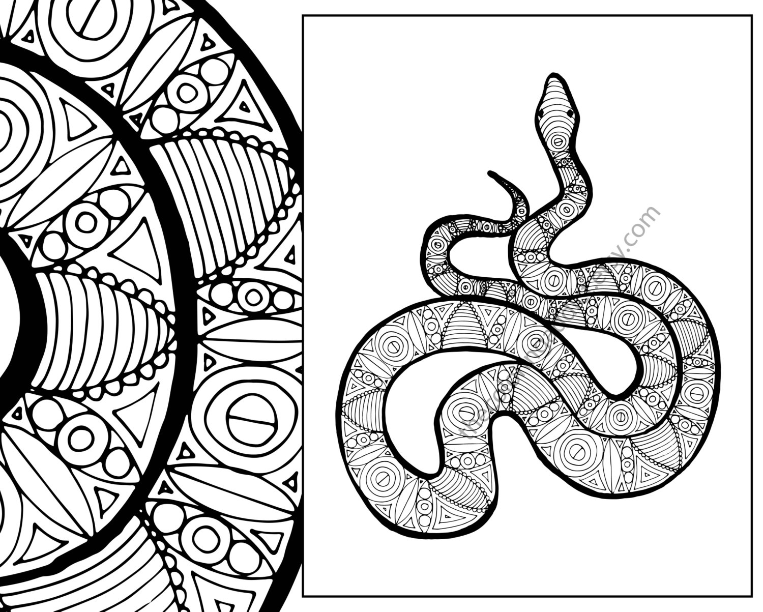 snake coloring pictures snake coloring sheet animal coloring pdf zentangle adult snake pictures coloring