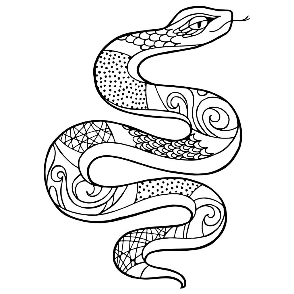 snake coloring pictures snake colouring picture snake colouring in coloring coloring pictures snake