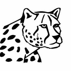 snow leopard outline top 25 free printable leopard coloring pages online leopard outline snow