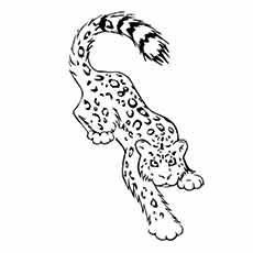 snow leopard outline top 25 free printable leopard coloring pages online snow outline leopard
