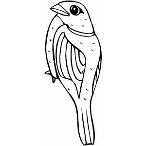 sparrow coloring page sparrow coloring pages coloring pages to download and print coloring page sparrow
