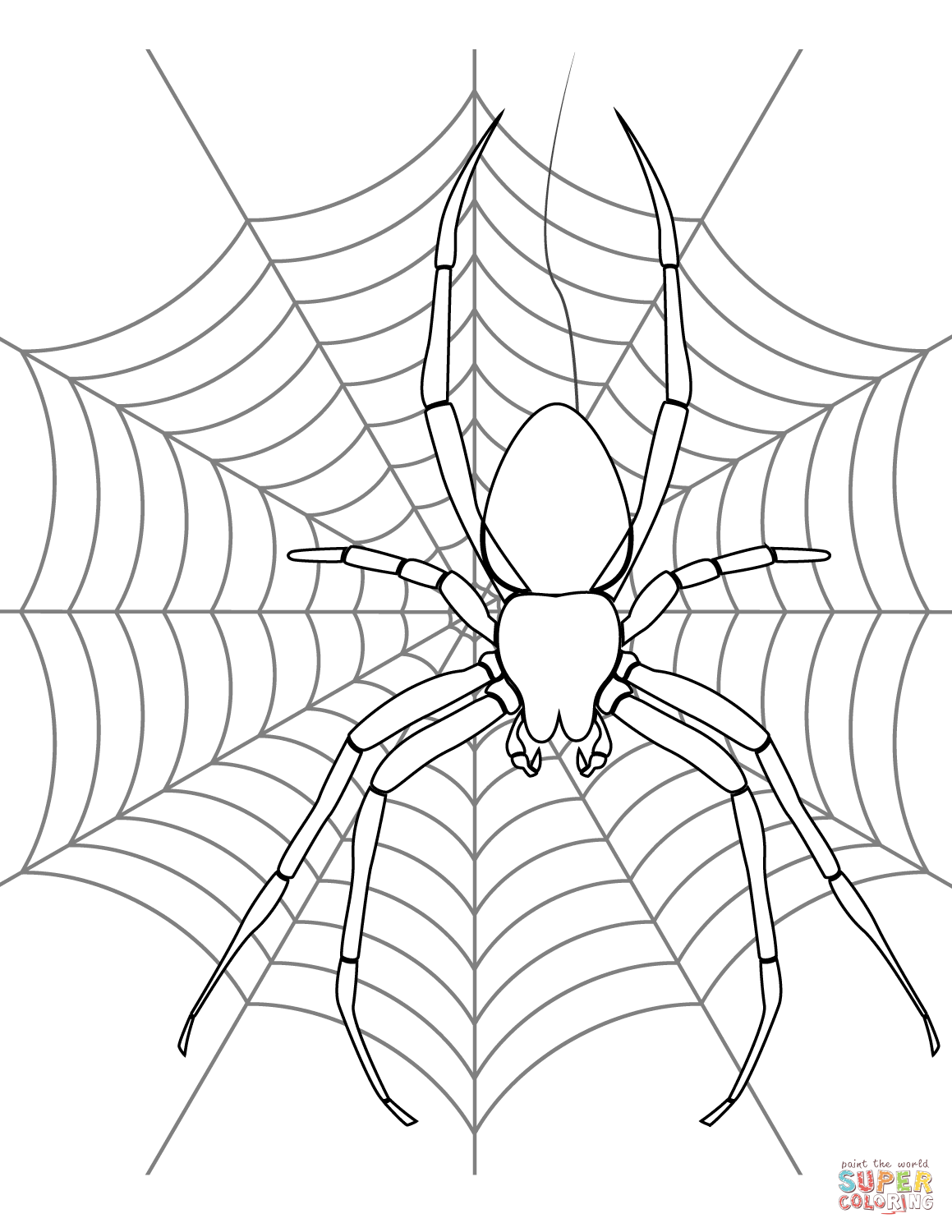 spider coloring book halloween spider drawing at getdrawings free download book coloring spider