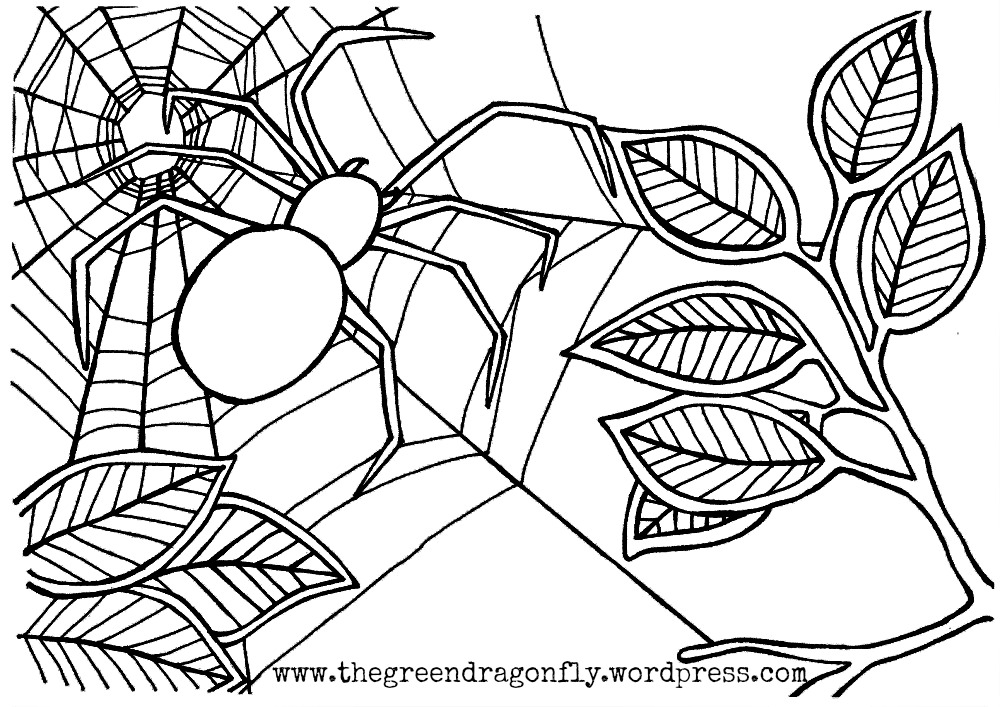 spider coloring book spider coloring pages to download and print for free book spider coloring 1 2