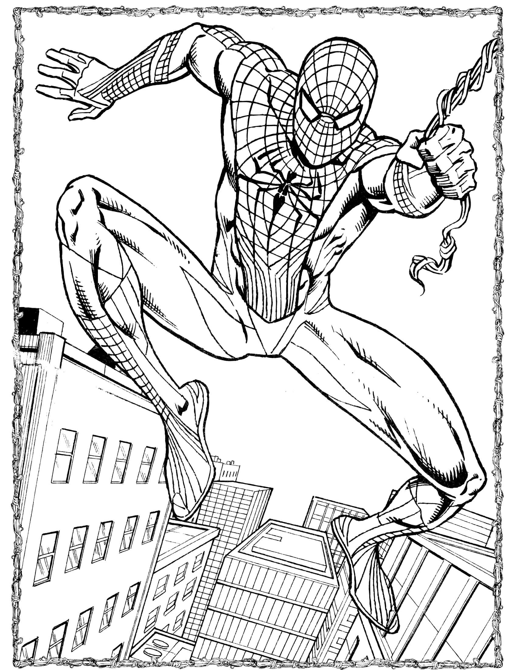 spider man coloring spider man 49 coloringcolorcom man spider coloring
