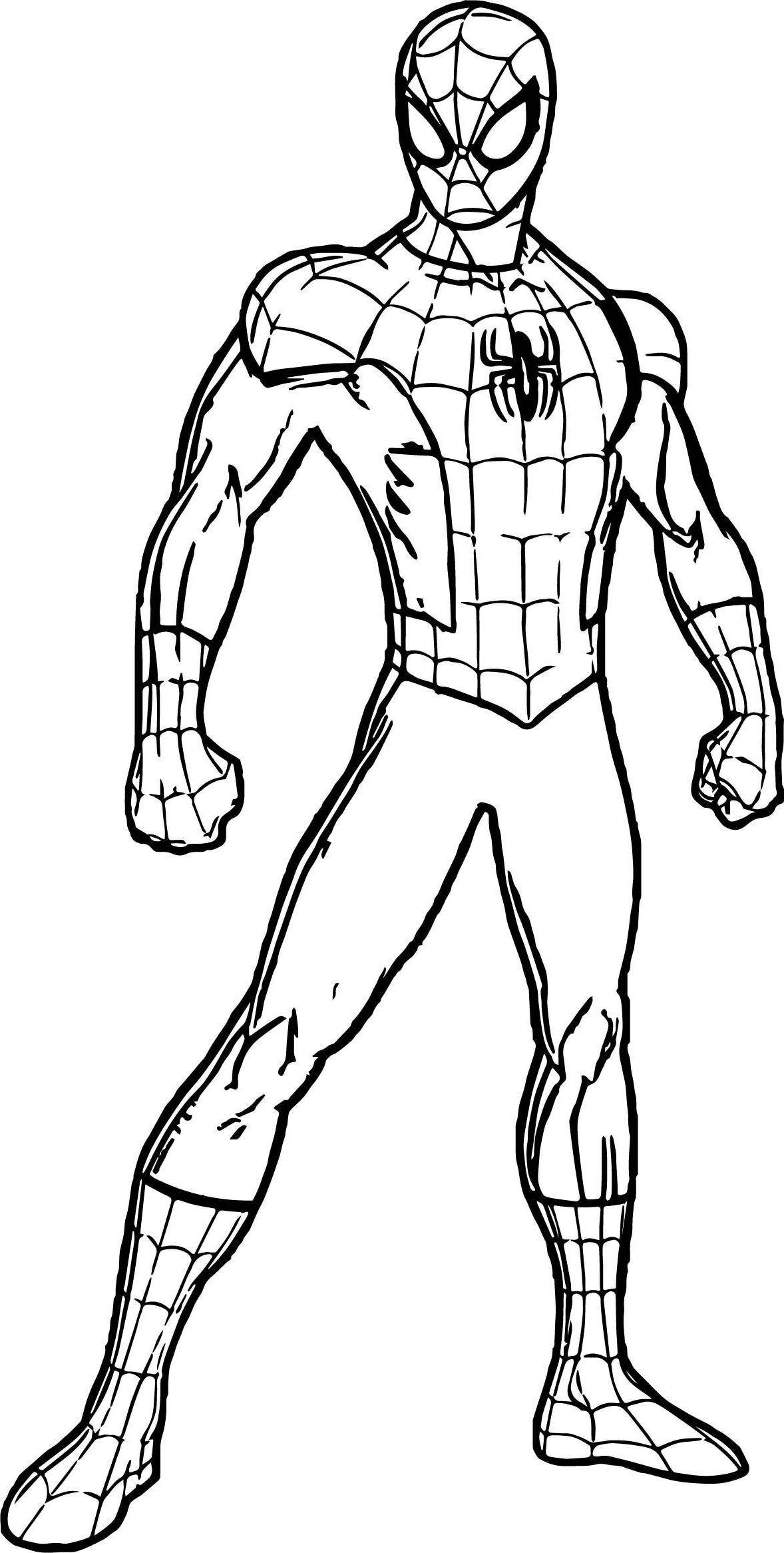 spiderman outline spiderman outline drawing at getdrawings free download spiderman outline 1 2