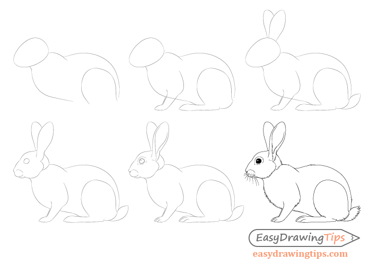 step by step drawing easter bunny how to draw easter bunny step by step easter seasonal drawing by step bunny easter step
