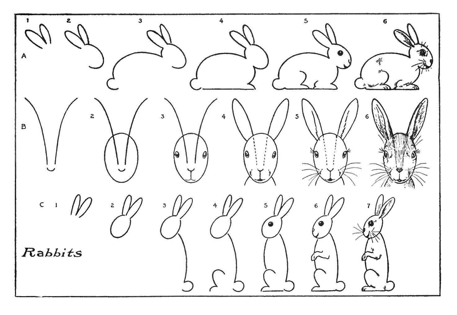 step by step drawing easter bunny how to make an easter bunny chain kids crafts step bunny easter drawing step by
