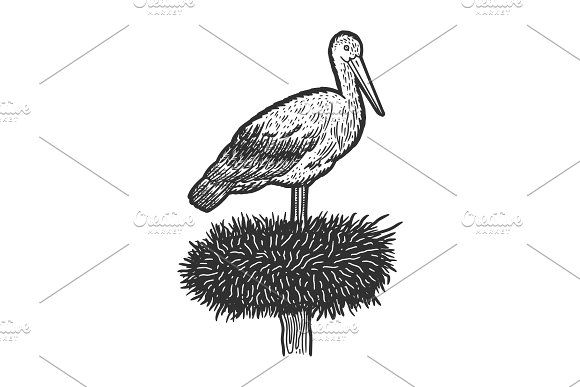 stork sketch how to draw a stork with baby step by step drawing tutorials sketch stork