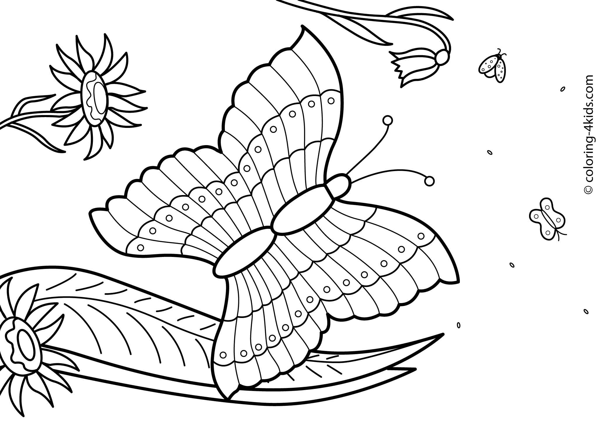 summer color sheets summer coloring pages to download and print for free color sheets summer