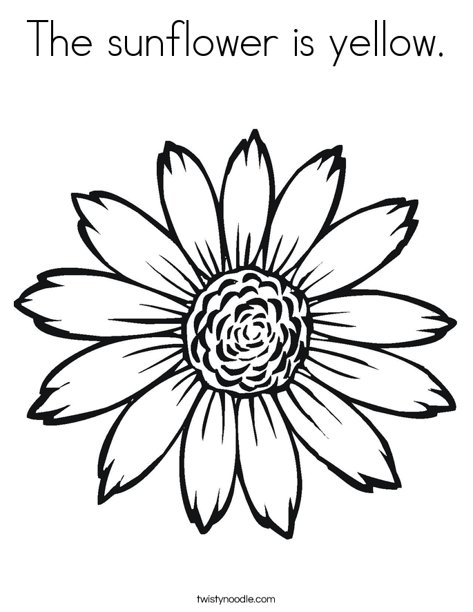 sunflower pictures to colour in sunflower amazing coloring page download print online to pictures in sunflower colour