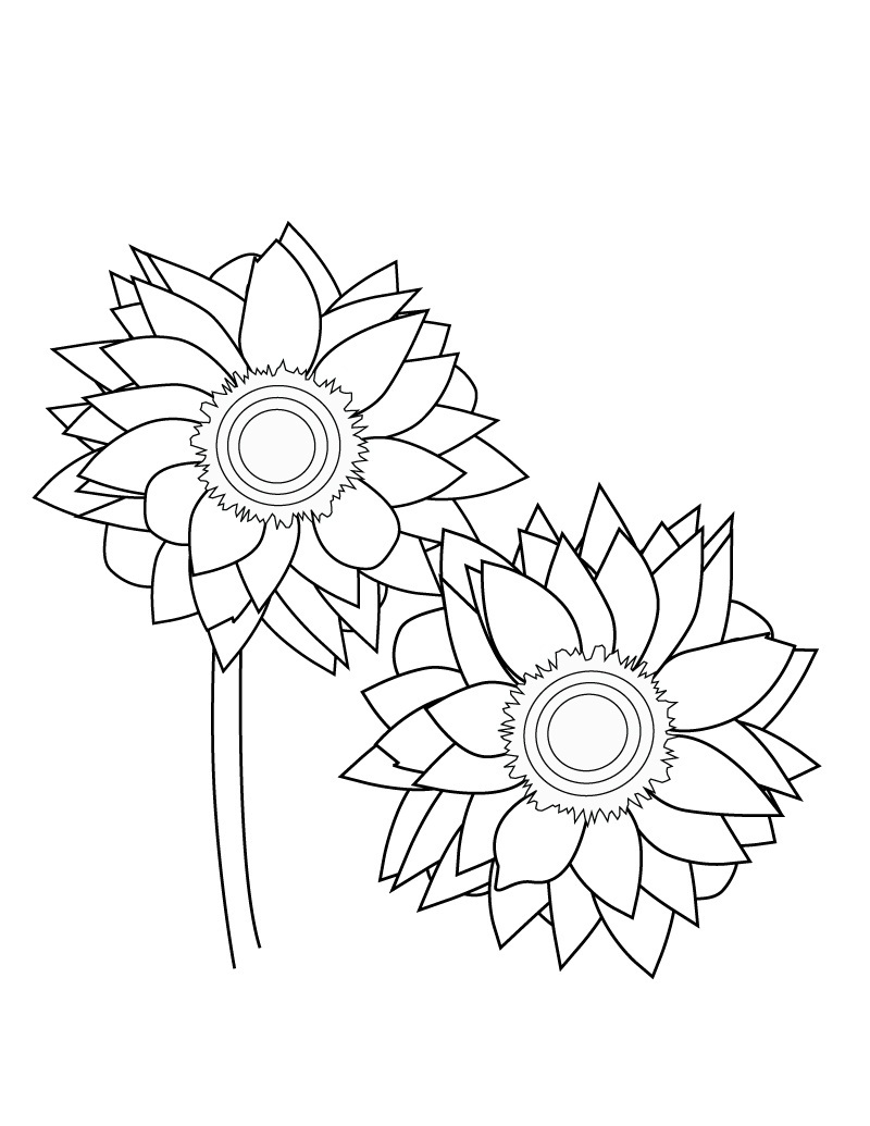 sunflower pictures to colour in sunflower coloring pages pictures whitesbelfast in sunflower to colour pictures