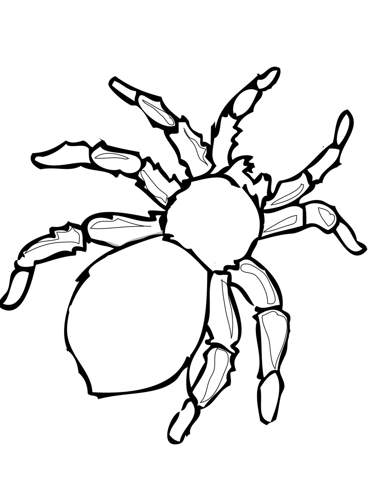 tarantula coloring pages free printable spider coloring pages for kids coloring tarantula pages