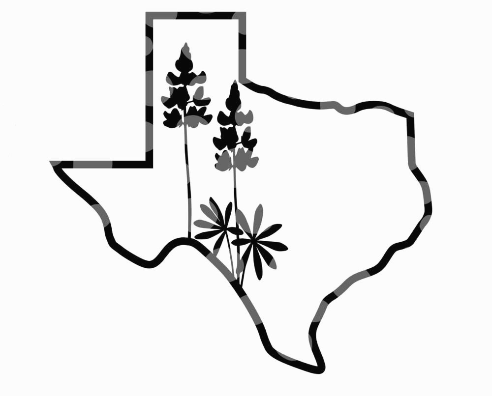 texas flag outline texas svg png dxf state outline instant download flag outline texas