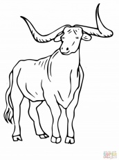 texas longhorns coloring pages 34 texas longhorns coloring pages zsksydny coloring pages pages coloring longhorns texas