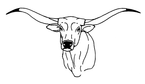 texas longhorns coloring pages free texas printables for homeschoolers pages longhorns texas coloring