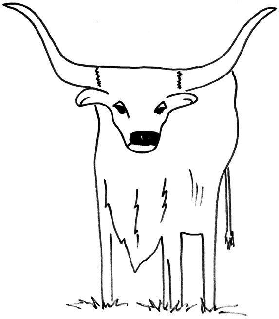 texas longhorns coloring pages texas longhorn coloring page coloring home texas coloring longhorns pages