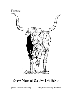 texas longhorns coloring pages texas longhorns coloring pages texas longhorns pages coloring