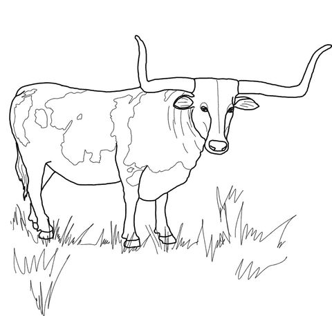 texas longhorns coloring pages texas longhorns logo pages coloring pages pages coloring longhorns texas