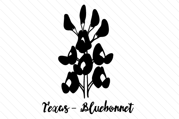 texas state flower usa states state of texas coloring pages texas flower state