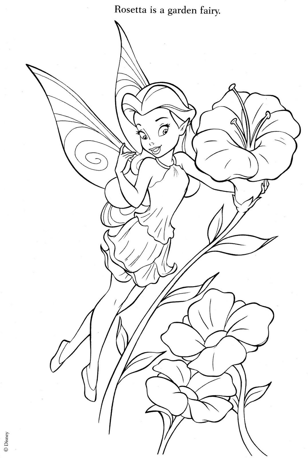 tinkerbell for coloring tinkerbell coloring pages team colors coloring tinkerbell for