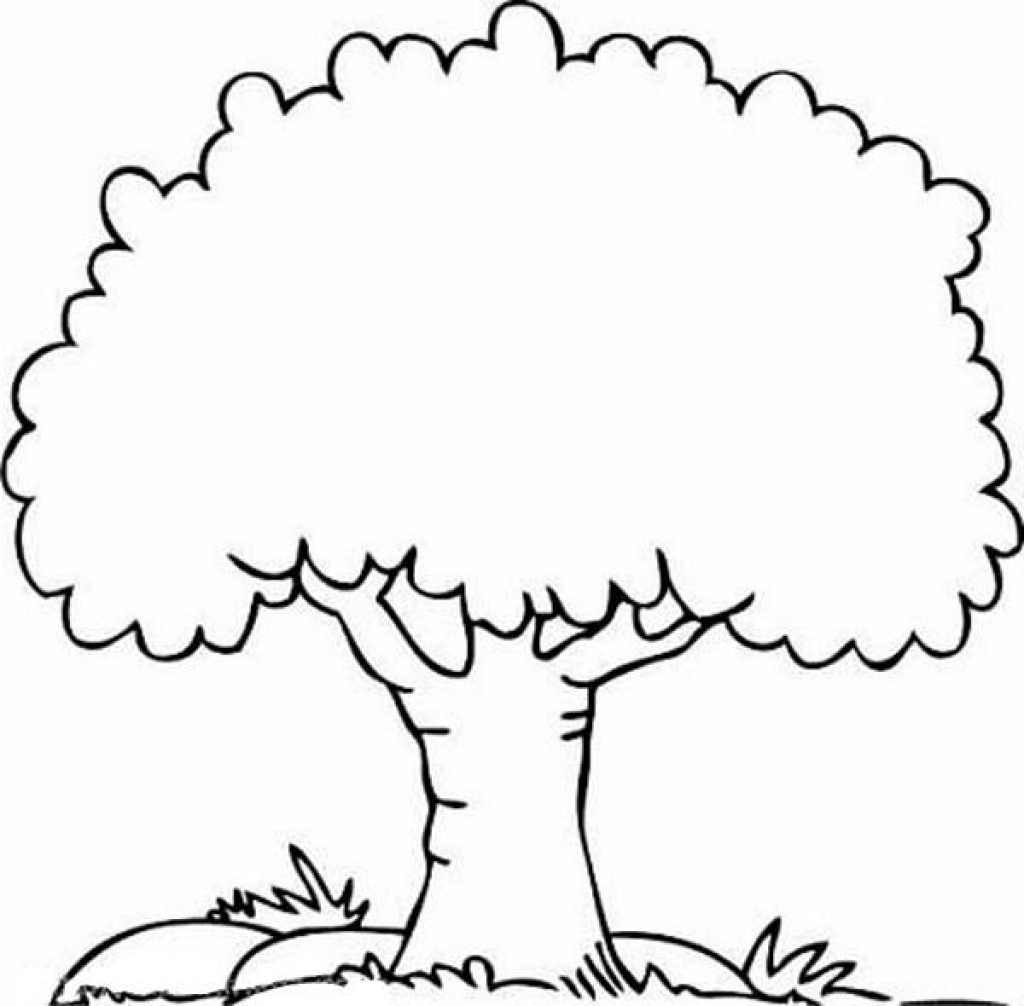tree coloring free printable tree coloring pages for kids tree coloring