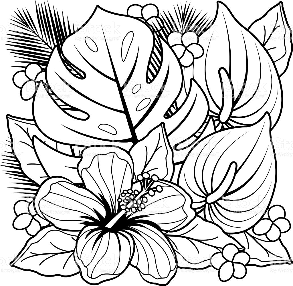tropical coloring pages hawaiian tropical flowers coloring page mama likes this coloring tropical pages
