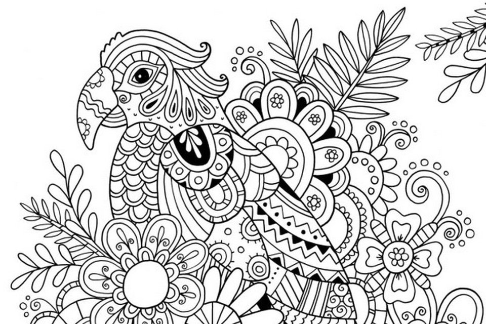 tropical coloring pages tropical coloring download tropical coloring for free 2019 tropical coloring pages