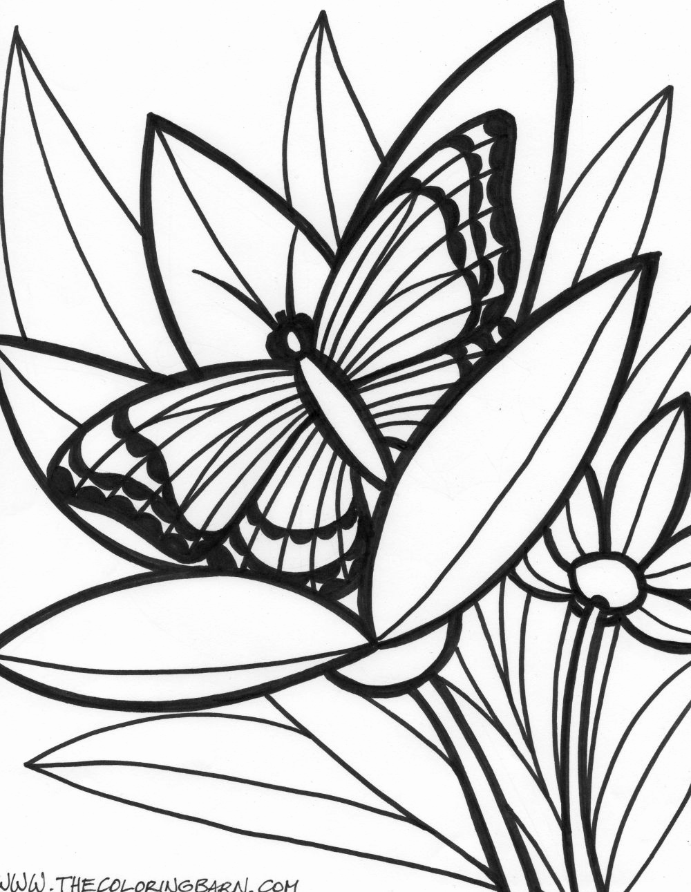 tropical pictures to color tropical beach coloring pages at getdrawings free download color pictures tropical to