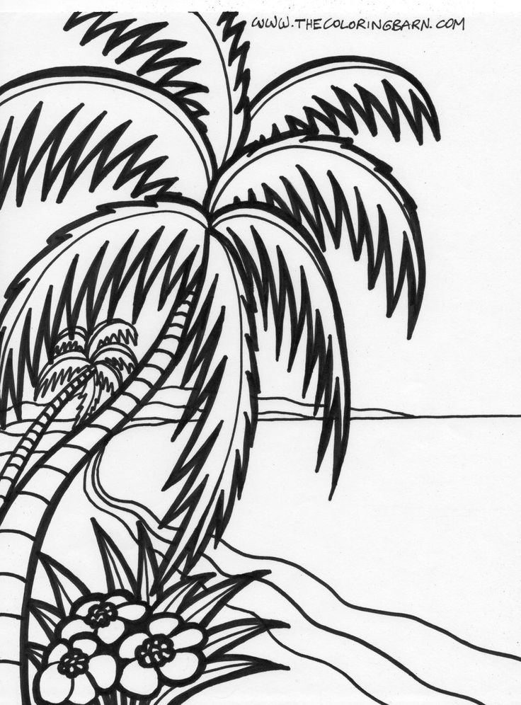tropical pictures to color tropical leaf drawing at getdrawings free download to tropical pictures color
