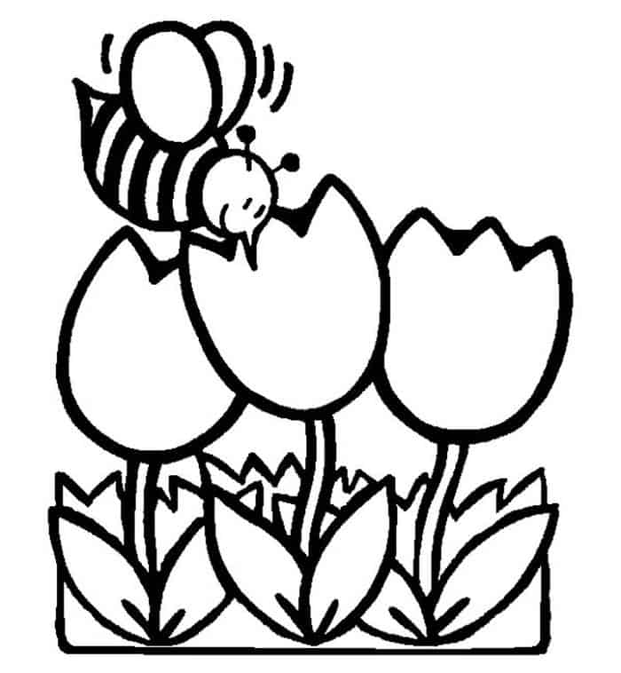 tulip flower coloring pages printable tulip coloring pages for kids cool2bkids coloring pages flower tulip