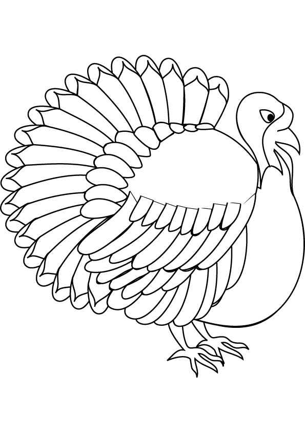 turkey color pages realistic turkey coloring pages at getcoloringscom free pages color turkey